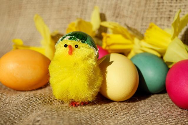 Receta mona de pascua chocolate huevos y pollito de pascua BGRUP