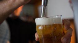 Encuentra cerveza Mahou al por mayor en B Grup