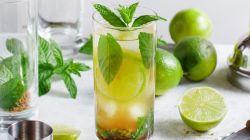 Bebidas alcohólicas para restaurantes: el secreto de servir un buen mojito