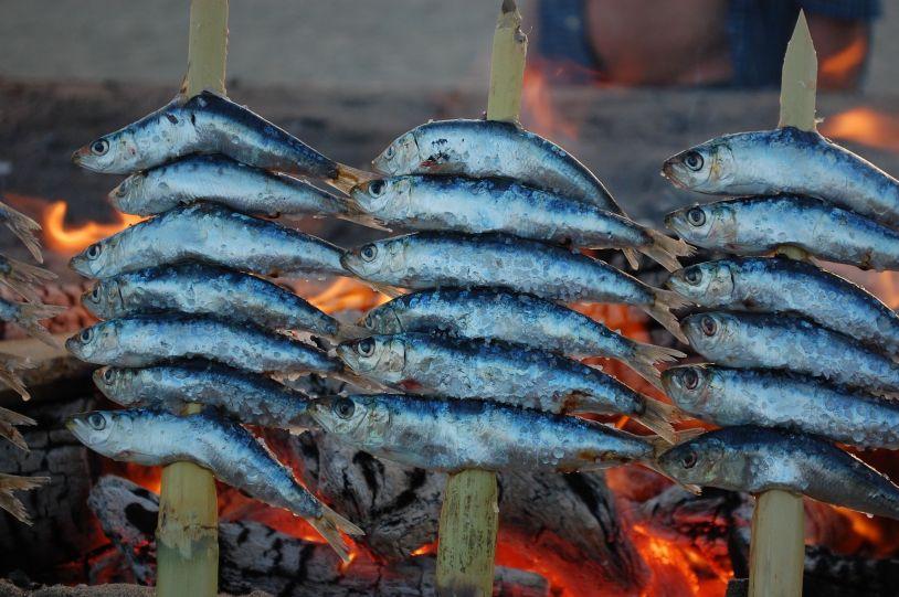 El pez azul, un producto que forma parte de la dieta mediterránea