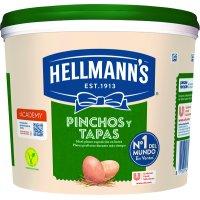 Mayonesa Hellmann's Ensaldas Y Tapas 5lt - 13316