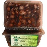 Caracol Cocido Vegacor 600gr - 14645