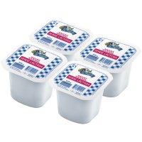Iogurt Natural Sense Lactosa Fageda 125gr Pack 4 Grane - 16544