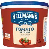 Ketchup Hellmann's Cubo 4,4lt - 17842