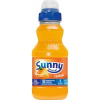 Sunny Delight 310 Florida Pack - 1995