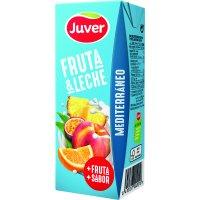 Juver Fruita+llet Mediterrani 200ml P-6 - 2004