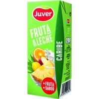 Juver Fruita+llet Carib 200ml P-6 - 2005