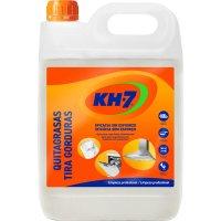 Desengrasante Kh-7 5lt - 2240