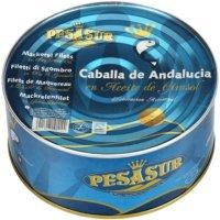 Caballa Pesasur R1000 - 5150