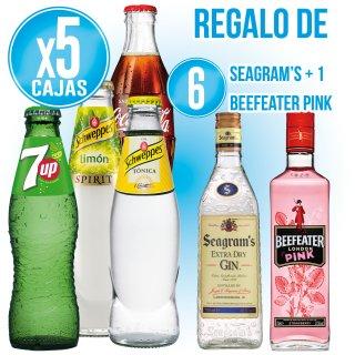 5 CAJAS REFRESCOS 200 SR SELECCIÓN + 6 BOTELLAS SEAGRAM'S + REGALO DE 1 BOTELLA BEEFEATER PINK