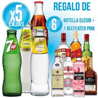 5 CAJAS REFRESCOS 200 SR SELECCIÓN + 6 BOTELLAS LICORES SELECCIÓN + REGALO 1 BOTELLA BEEFEATER PINK