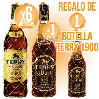 6 BOTELLAS DE TERRY + 1 BOTELLA DE TERRY 1900 + REGALO DE 1 BOTELLA TERRY 1900