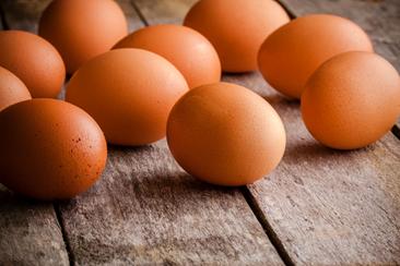huevo en polvo