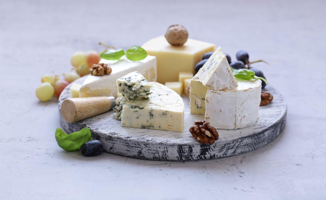 distribuidores de quesos de importacion