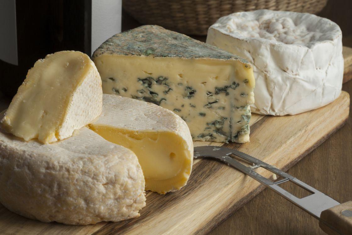 dsitribuidores de quesos de importacion