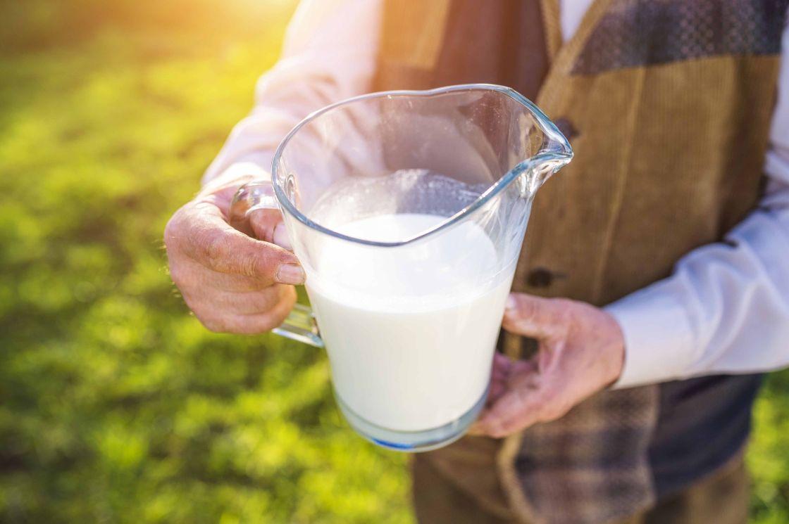 leche hosteleria precio