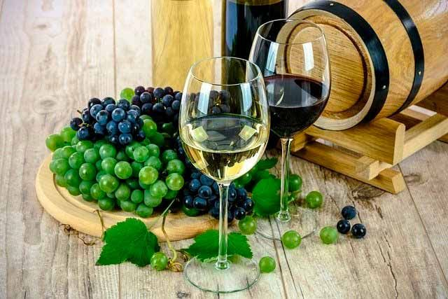 distribuidores de cariñena vino