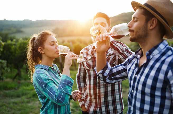 costers del segre vino