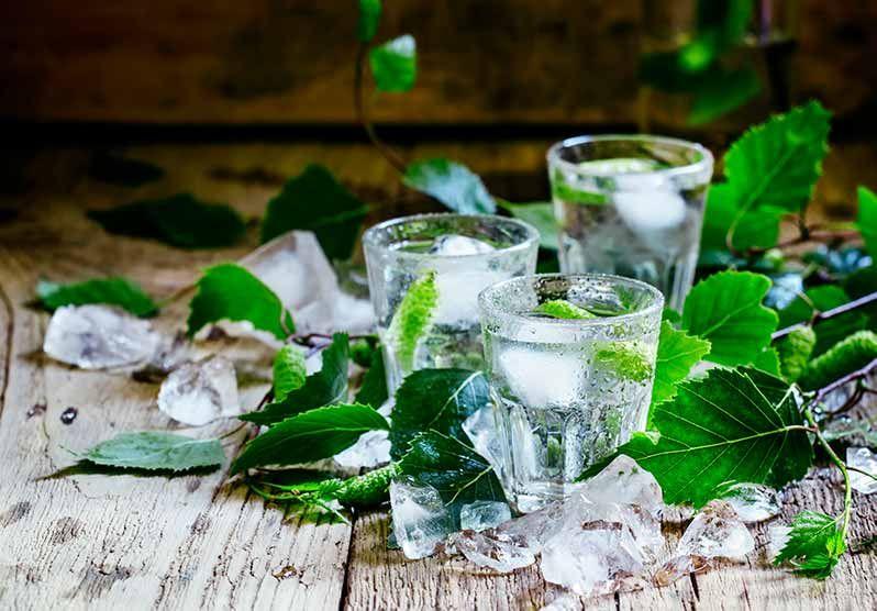venda de vodka amb sabor